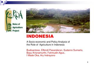 A Socio-economic and Policy Analysis of  the Role of  Agriculture in Indonesia