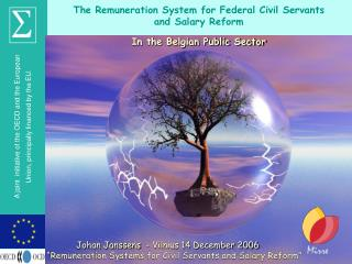 The Remuneration System for Federal Civil Servants  and Salary Reform In the Belgian Public Sector