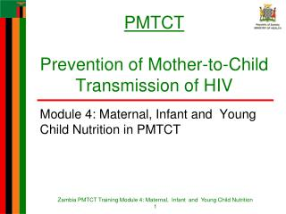 PMTCT Prevention of Mother-to-Child Transmission of HIV