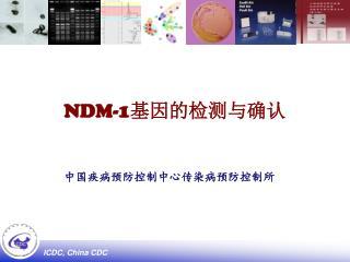 NDM-1 基因的检测与确认