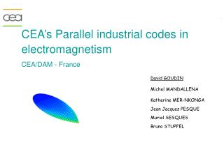CEA�s Parallel industrial codes in  electromagnetism CEA/DAM - France