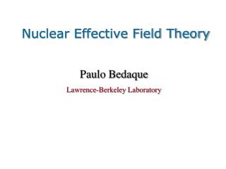 Nuclear Effective Field Theory