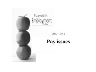CHAPTER 5 Pay issues