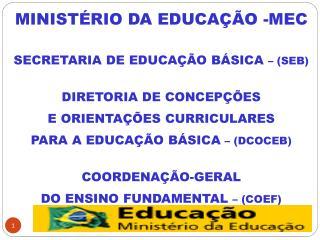 MINISTÉRIO DA EDUCAÇÃO -MEC SECRETARIA DE EDUCAÇÃO BÁSICA  – (SEB) DIRETORIA DE CONCEPÇÕES