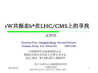 tW 共振态 b *在 LHC/CMS 上的寻找