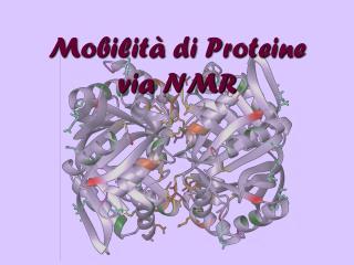 Mobilità di Proteine via NMR