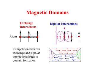 Magnetic Domains