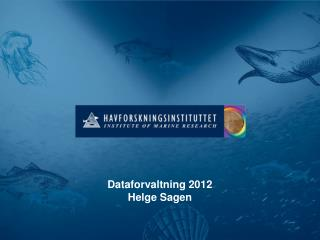 Dataforvaltning 2012 Helge Sagen