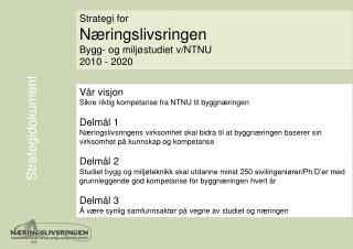Strategidokument