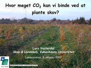 Hvor meget CO 2  kan vi binde ved at plante skov?