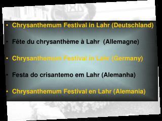 Chrysanthemum Festival in Lahr Deutschland  F te du chrysanth me   Lahr  Allemagne  Chrysanthemum Festival in Lahr Germa
