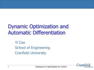 Dynamic Optimization and Automatic Differentiation