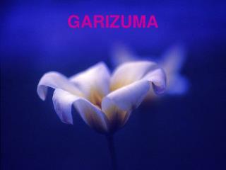 GARIZUMA