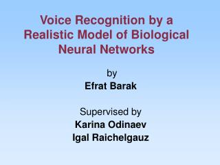 Voice Recognition by a Realistic Model of Biological Neural Networks