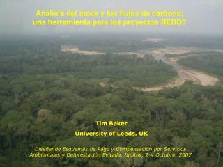 Análisis del stock y los flujos de carbono,  una herramienta para los proyectos REDD?