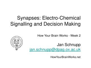 Synapses: Electro-Chemical Signalling and Decision Making
