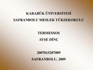 KARAB K  NIVERSITESI SAFRANBOLU MESLEK Y KSEKOKULU  TERMESSOS AYSE DIN   2007015207009 SAFRANBOLU, 2009