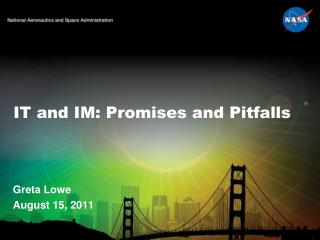IT and IM: Promises and Pitfalls