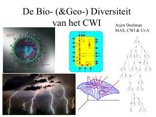 De Bio- (&Geo-) Diversiteit                         van het CWI