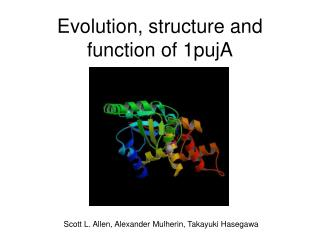 Evolution, structure and function of 1pujA