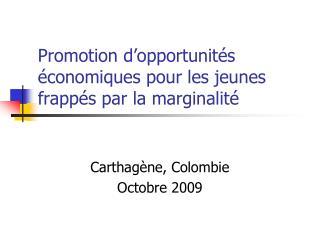 Promotion d opportunit s  conomiques pour les jeunes frapp s par la marginalit