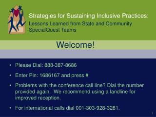 Strategies for Sustaining Inclusive Practices: