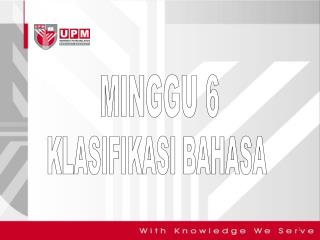 MINGGU 6