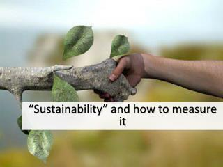 """Sustainability"" and how to measure it"