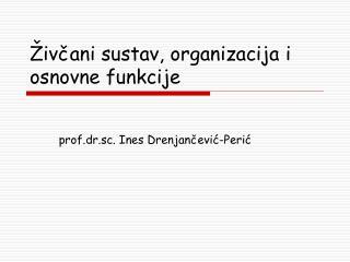 Živčani sustav, organizacija i osnovne funkcije