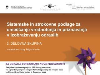 Sistemske in strokovne podlage za umeščanje vrednotenja in priznavanja v izobraževanju odraslih