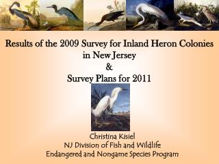 Results of the 2009 Survey for Inland Heron Colonies in New Jersey  & Survey Plans for 2011
