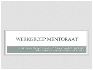 WERKGROEP mentoraat
