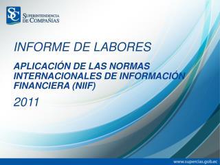 APLICACIÓN DE LAS NORMAS INTERNACIONALES DE INFORMACIÓN FINANCIERA (NIIF)