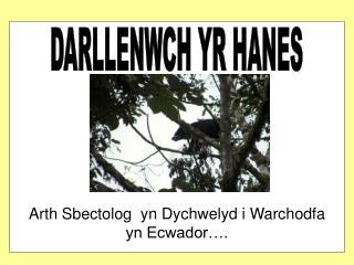DARLLENWCH YR HANES