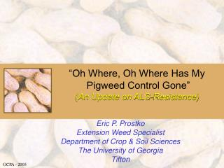 """Oh Where, Oh Where Has My  Pigweed Control Gone""  (An Update on ALS-Resistance)"