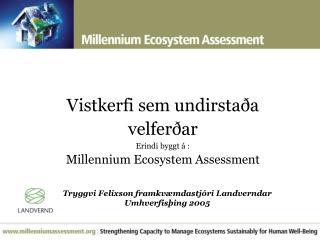 Vistkerfi sem undirstaða velferðar Erindi bygg t  á : Millennium Ecosystem Assessment