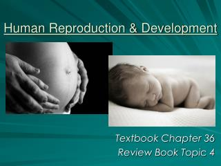 Human Reproduction & Development
