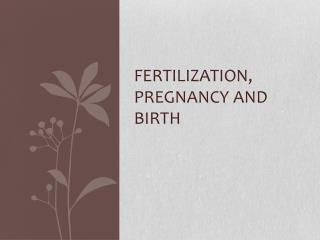 Fertilization, Pregnancy and birth