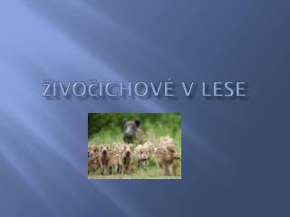 Živočichové v lese