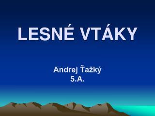 LESN� VT�KY Andrej ?a�k� 5.A.
