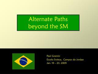 Alternate Paths beyond the SM
