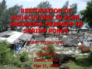 RESTORATION OF AQUACULTURE IN ACEH, INDONESIA – SEAWEED IN SHRIMP PONDS