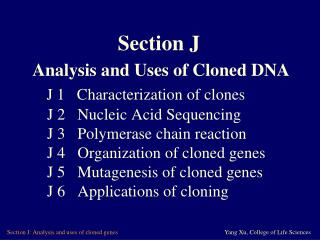 J 1   Characterization of clones