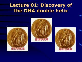 Lecture 01: Discovery of the DNA double helix
