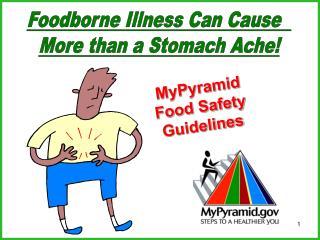 My Pyramid - Food Safety