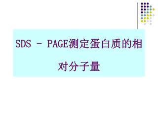 SDS - PAGE ???????????