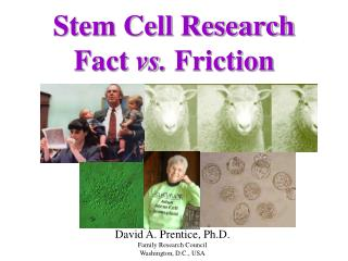 Stem Cell Research Fact  vs.  Friction