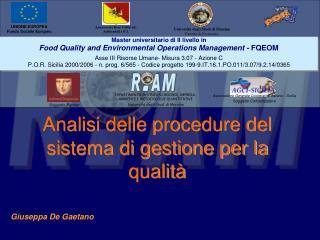 Analisi delle procedure del sistema di gestione per la qualit
