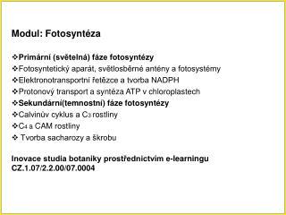 Modul: Fotosyntéza Primární (světelná) fáze fotosyntézy