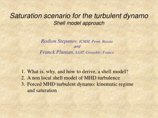 Saturation scenario for the turbulent dynamo Shell model approach